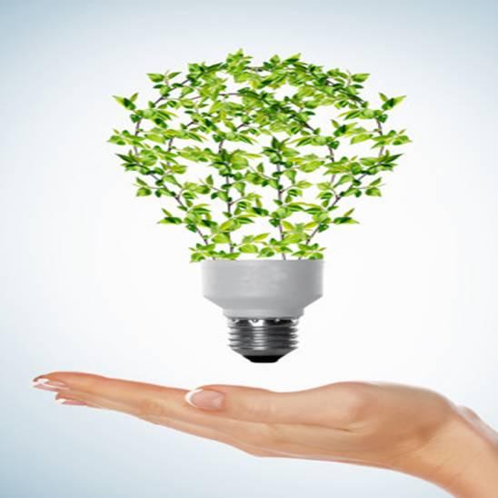 ¿Qué ganas organizando un evento sostenible?